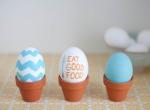 Jaja u saksijicama