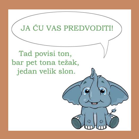 7_slon